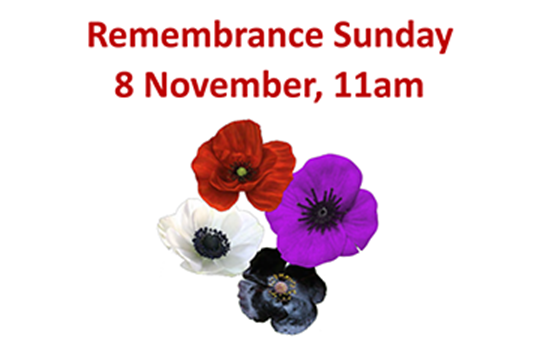 Remembrance Day - Activity Pack